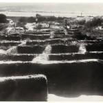 Некрополът-в-периода-на-разкопките-2
