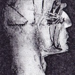 Портретна реконструкция на човек от халколита - 2