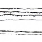 VHN-1-Кремъчна-пластина