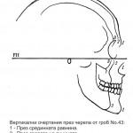 VHNI-Гроб-43-очертания-през-черепа