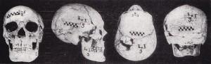 VHNII-Гроб-3-череп
